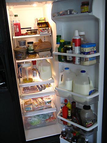 Real_fridge