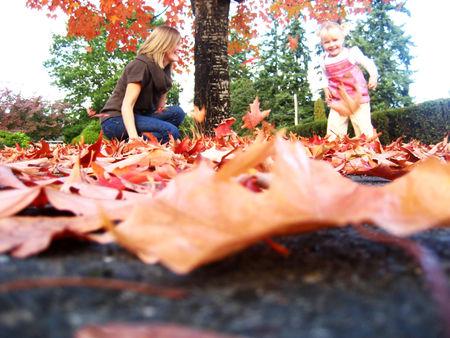 Fallday_leaf4