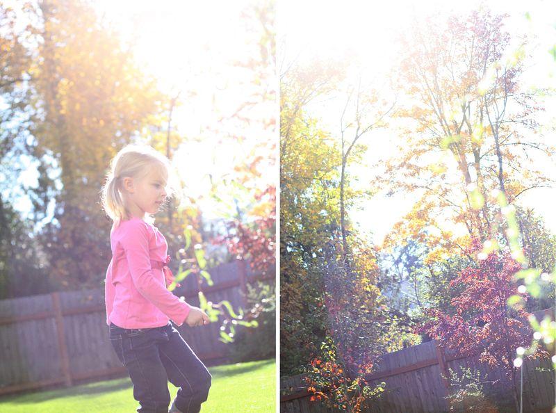 Fallday5
