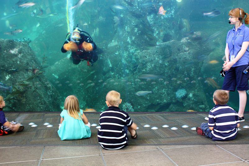 Seattle_aquarium1
