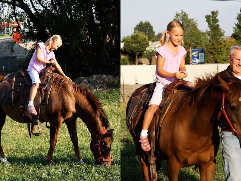 Poss_horse2