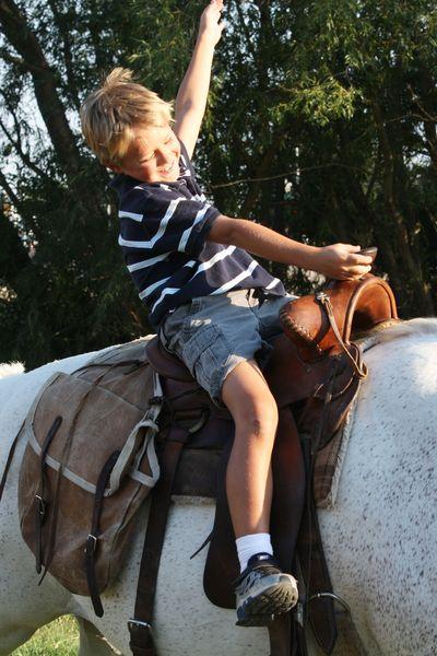 Poss_horse3
