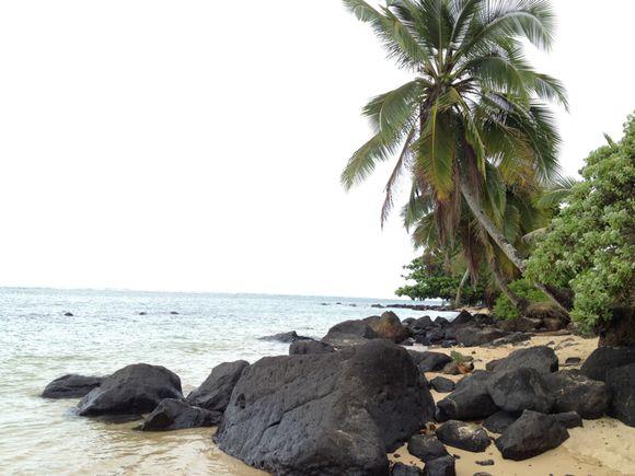 instafriday // kauai
