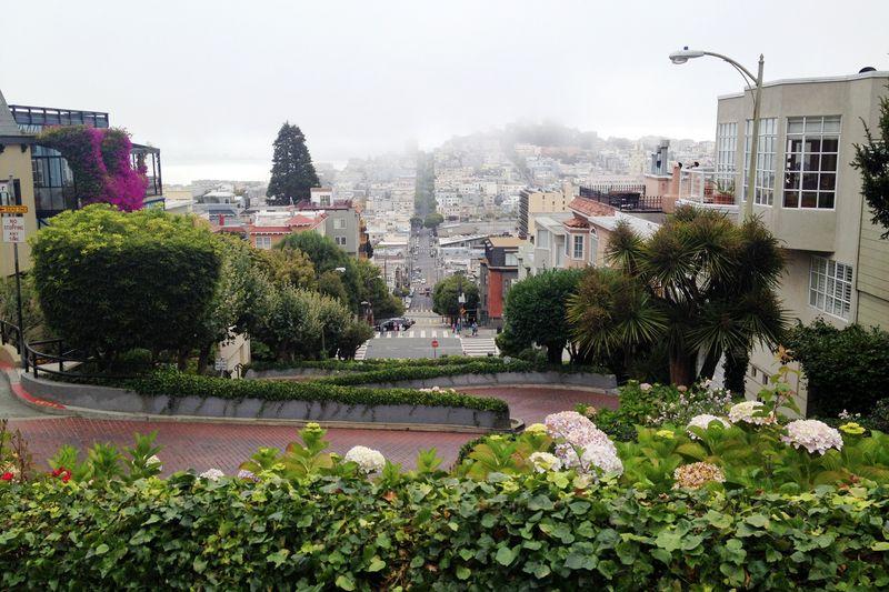 Sanfrancisco day2_21