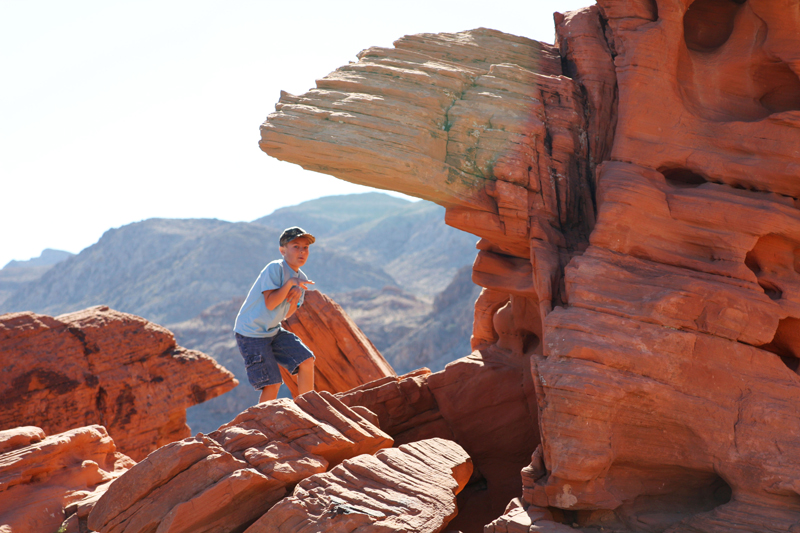 Valley of Fire Beehives5