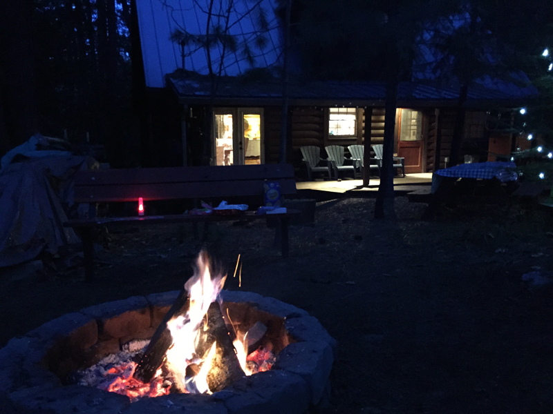 Cabin11