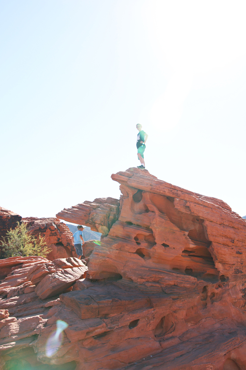 Valley of Fire Beehives6