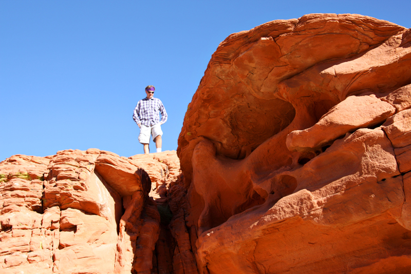 Valley of Fire Beehives7