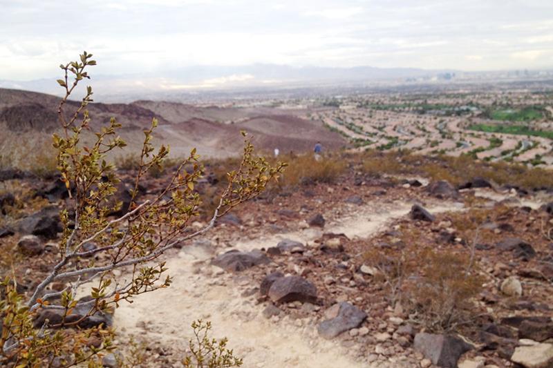 City View Hike11