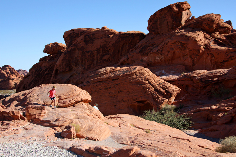 Valley of Fire Beehives1