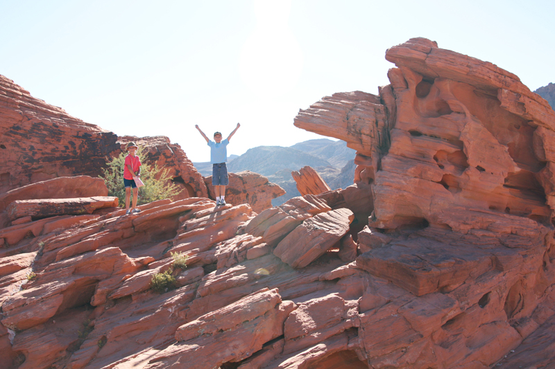 Valley of Fire Beehives4