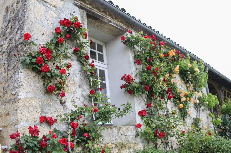 ChateauMondesir-8