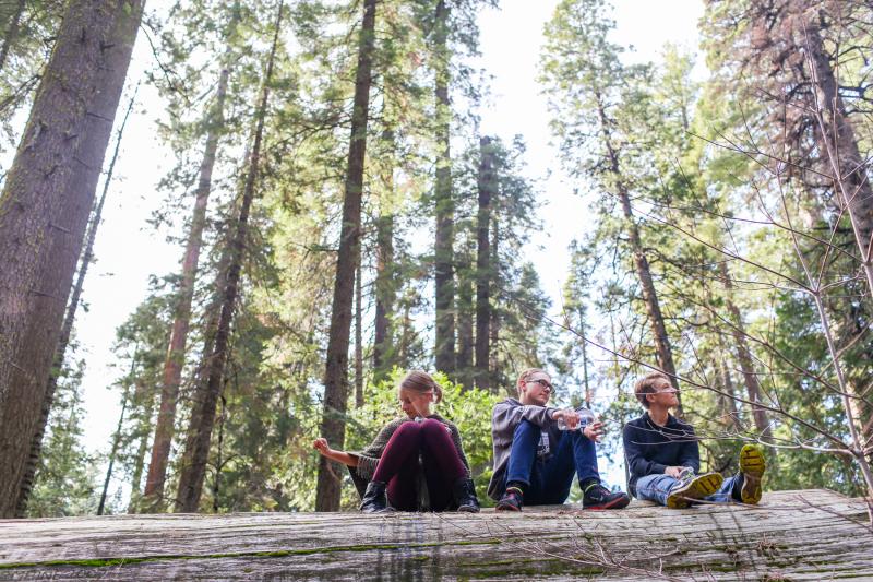 Hiking Big Trees -3