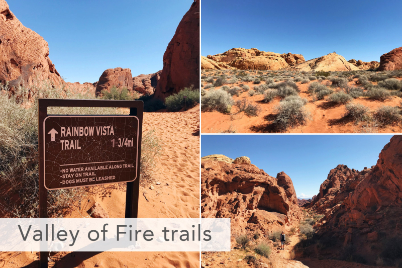 Valley of Fire Rainbow Vista Trail
