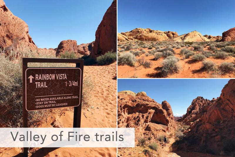 Valley of Fire Rainbow Vista Trail