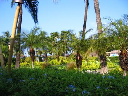 Hawaii_039_2